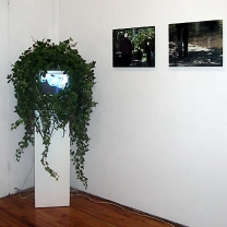 Photography/Video,  Monique Goldstrom Gallery, New York, NY